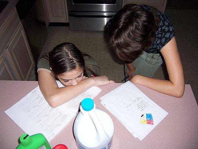 Are You Homeschooling the Stupid Way?