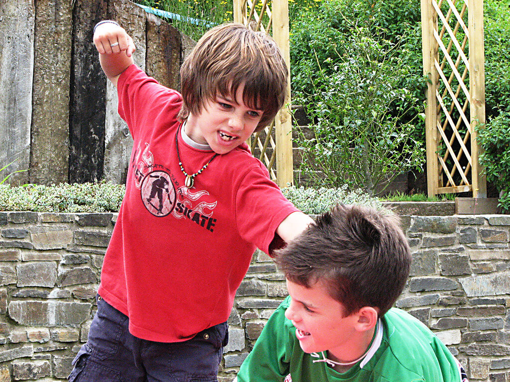 How to Get Your Kids to Stop Fighting (with each other)